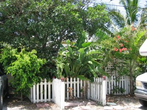 Tropical Setting One House to Beach